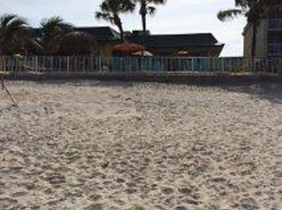 Holiday Inn Hotel & Suites Vero Beach - Oceanside : View looking back from the beach