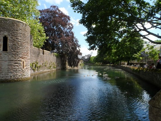Wells Cathedral : moat and bishops palace