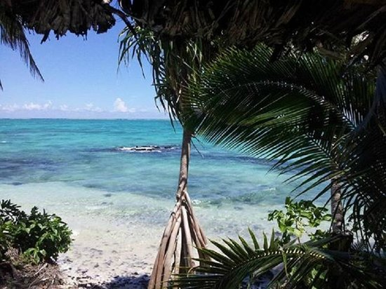 Samoan Outrigger Hotel: Luxury Hotels in Samoa with Virgin Cove Resort