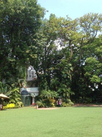 Hotel Boutique Casa de Campo: Exuberantes jardines