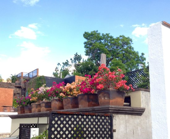 Casa Quetzal Hotel: Balcony decorations