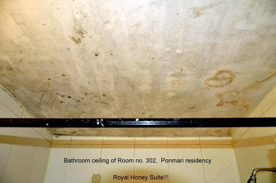 Ponmari Residencyy: Seeping ceiling