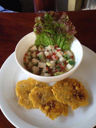 Nayara Hotel, Spa & Gardens : Ceviche and Plantains.  YUM
