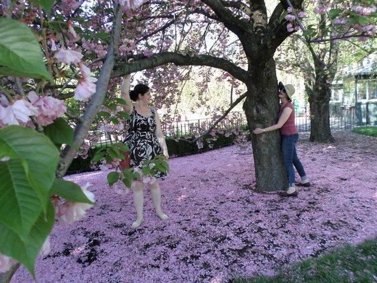 New York Botanical Garden : My daughters communig with Nature