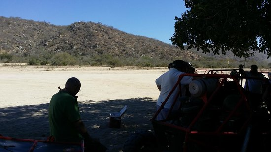 Cactus ATV Tours : On a water break under some trees