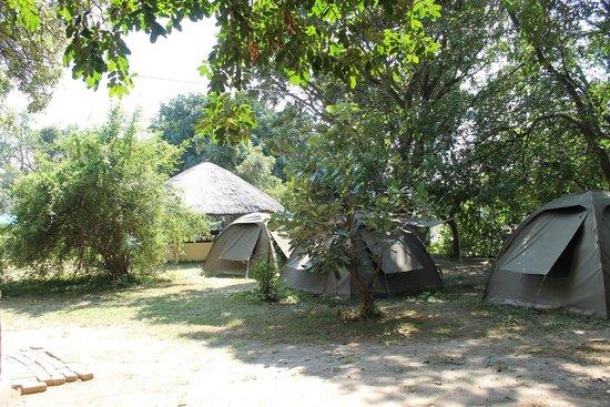 Marula Lodge: Tents