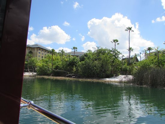 Loews Royal Pacific Resort at Universal Orlando: view of beach from boat
