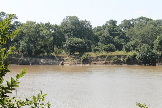 Marula Lodge: Looking out at the river from camp