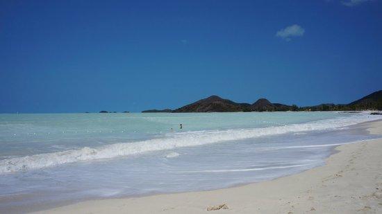 Jolly Beach Resort & Spa : пляж на котором находиться отель