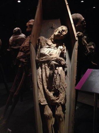 Museo De Las Momias de Guanajuato: only mummy in a coffin