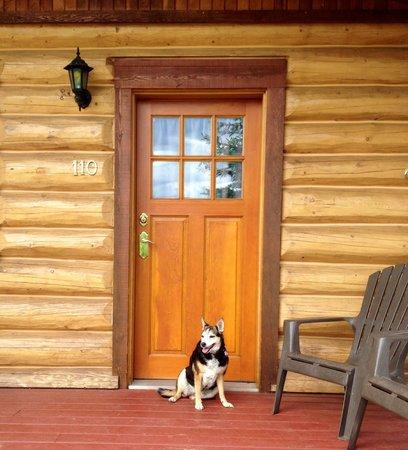 Glacier House Resort : Pet friendly cabin = happy dog!