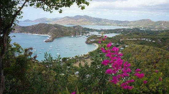 Английская Гавань, Антигуа: территория гавани
