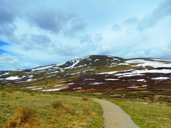 Guanella Pass: path at summit