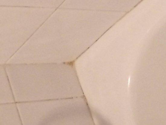 Melia Jardines del Teide: Salle de bain moissi