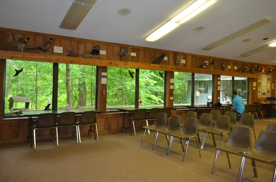 Fernwood Botanical Garden and Nature Preserve: Nature Center Birdwatching Area