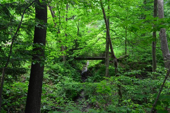Fernwood Botanical Garden and Nature Preserve: Trails