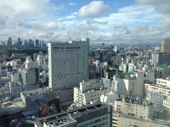 Cerulean Tower Tokyu Hotel: 20th Floor City View