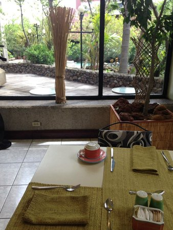 Radisson Hotel San José Costa Rica: Excelente vista desde el interior
