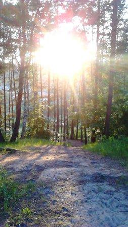 Parc Łazienki : Park marzenie