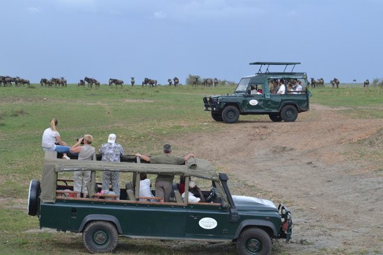Mara Intrepids Luxury Tented Camp: Safari