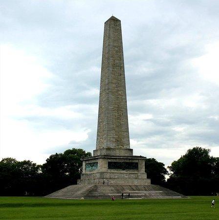 Phoenix Park: The Wellington Testimonial ( obelisk)