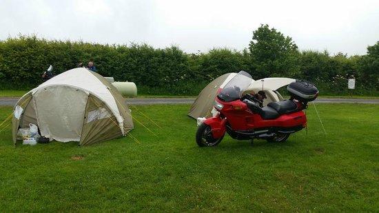 Runswick Bay Caravan and Camping Park: Campsite