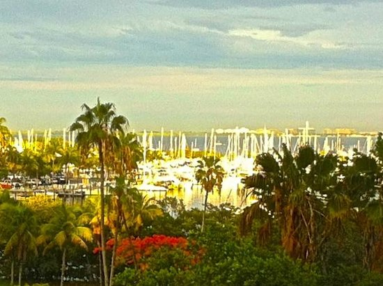 The Mutiny Hotel: View of Coconut Grove waterfront from Mutiny Hotel