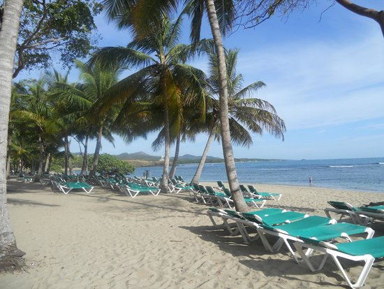 ClubHotel Riu Merengue: Beach