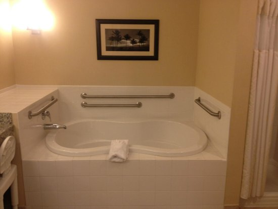Captivating Hilton Garden Inn Lakeland: Jacuzzi Amazing Design