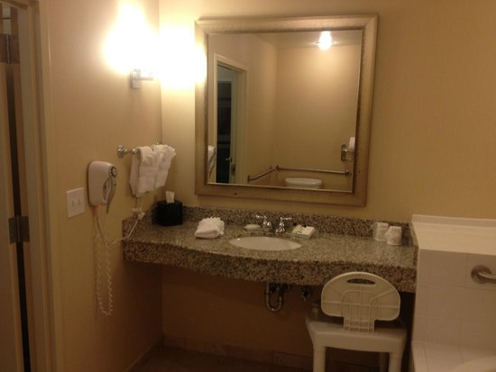 Hilton Garden Inn Lakeland: Vanity area in master bathroom