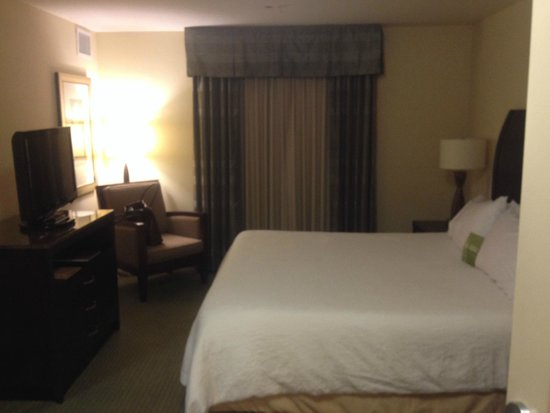 Hilton Garden Inn Lakeland: King Suite