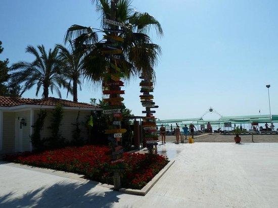Club Boran Mare Beach: территория