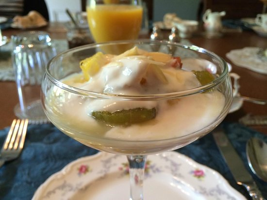 Albion Manor Bed and Breakfast: Fruit with yogurt