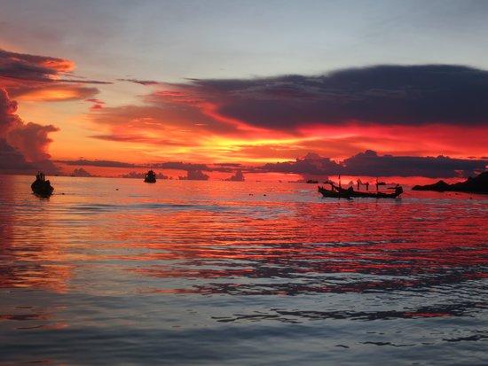 Palm Leaf Resort: tramonto