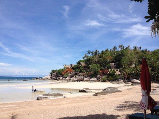 Palm Leaf Resort: Spiaggia davanti all'albergo