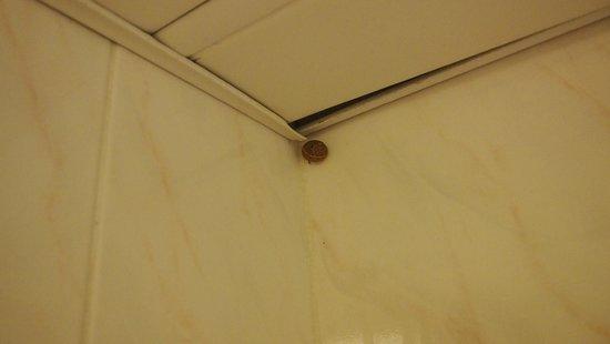 Avra Beach Resort Hotel - Bungalows: Bathroom