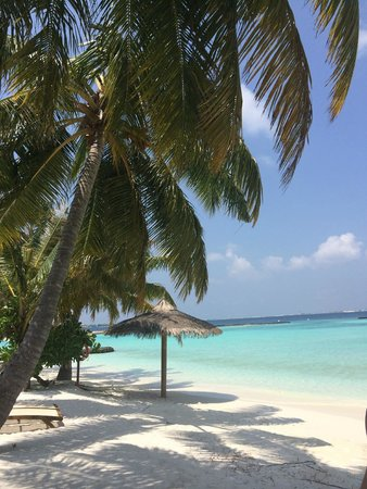 Kurumba Maldives: вид