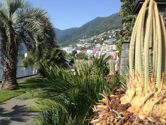 Sunstar Boutique Hotel Villa Caesar: Herrliche mediterrane Vegitation ums Hotel, unmittelbar bei der Promenade.