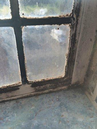 De Vere Selsdon Estate: Groth on window