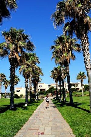 Sirens Hotels Beach and Village : Hotel garden