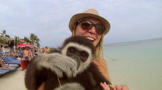 Ark Bar Beach Resort: Taking pics with exotic animals on the beach