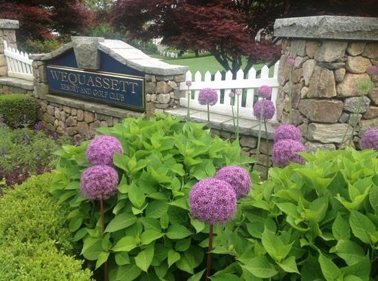 Wequassett Resort and Golf Club: Welcome