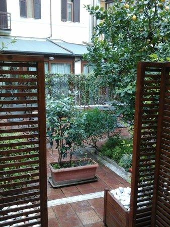 Hotel Select Garden : The lemon tree
