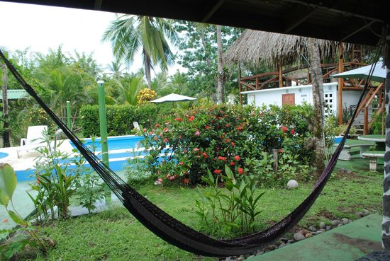 Hotel La Tranquilidad: Everything is so green