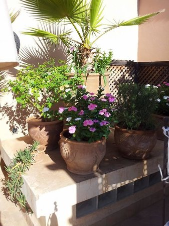 Riad 107 : Part of the rooftop