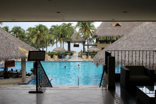 Flamingo Beach Resort And Spa: Look at this view! Lobby, pool, restaurant, BEACH!