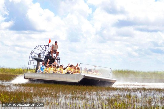 Miami Tour Company : Taking an airboat ride in the Everglades.