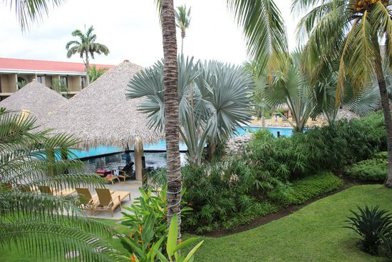 Flamingo Beach Resort And Spa: Another
