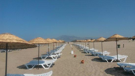 Dardanos Hotel: la spiaggia