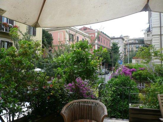 Palm Gallery Hotel: Vue de la terrasse
